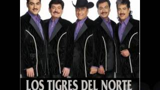 Watch Los Tigres Del Norte Me Dicen Perseverante video