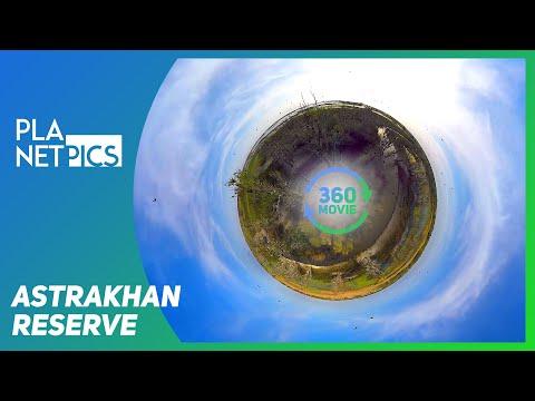 VR 360 | Astrakhan biosphere reserve