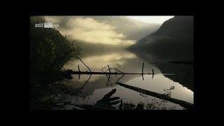 Video JARAN GOYANG OFFICIAL MUSIC VIDEO - Cornelius & Junior Cipt. Andi Mbendol download MP3, 3GP, MP4, WEBM, AVI, FLV April 2018