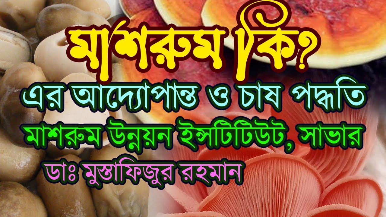 Mushroom Development Institute, Savar, Dhaka, Bangladesh