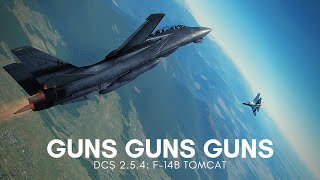 DCS 2.5: F-14B Tomcat Vs. SU-27 Guns Only Dogfight