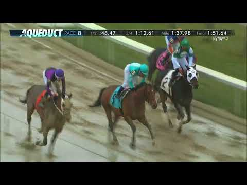 Zanotti - 2017 The Queens County Stakes