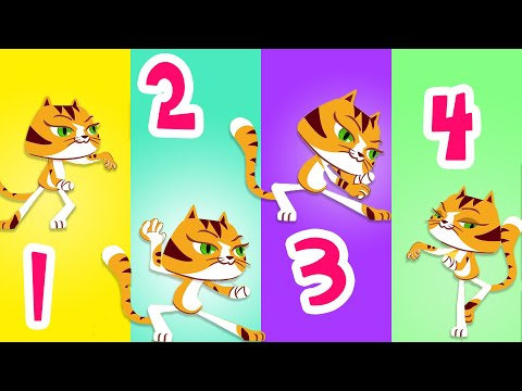 Cats and PRANKS - Superzoo for Kids