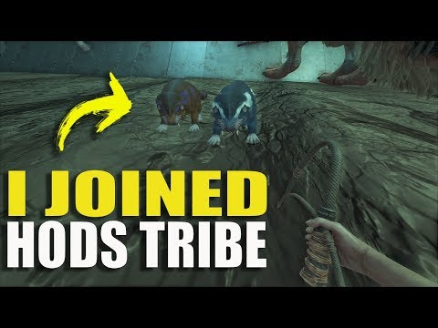 I JOINED HODS TRIBE   SMALL TRIBE SERVERS PVP S2 Ep1  ARK: SURVIVAL EVOLVED