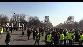 LIVE: Yellow Vest protests continue for 14th straight week in Paris