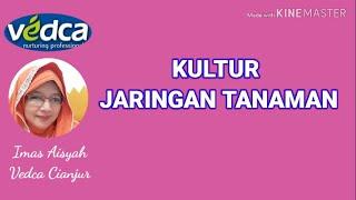 Video Produksi Bibit Tanaman secara Kultur Jaringan download MP3, 3GP, MP4, WEBM, AVI, FLV Januari 2018