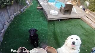 foxeer Legend 2 Vs Runcam 2 - Side By Side comparison