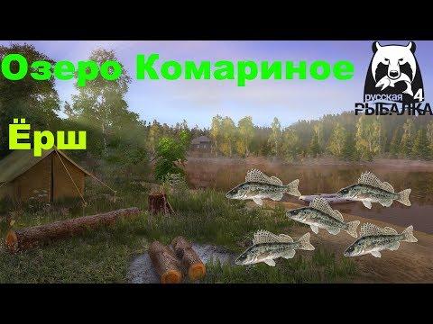 Ёрш на озере Комариное/Русская рыбалка 4/