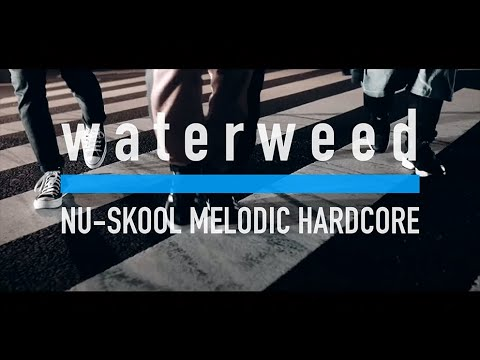 waterweed - July 31 (Music Video)