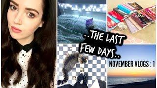 The Last Few Days.. : November Vlog 1
