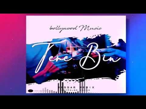 TERE BIN -_-Bollywood Reggae Music (Ayawasi)
