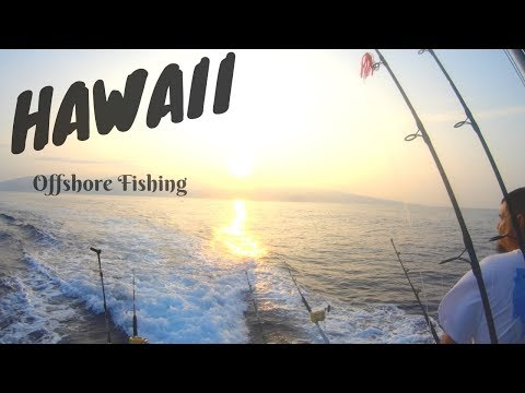 OffShore fishing in HAWAII (See what we catch!)
