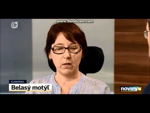 Kampaň belasý motýľ v TV JOJ