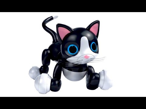 Robot Cat Toy >> Zoomer Kitty Interactive Robotic Cat Review Youtube