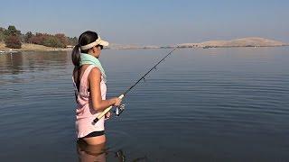 Red HOT Striper Action - O'neill Forebay San Luis Reservoir