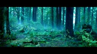 The Revenant wildest shoot : Leo fighting with Bear : Man vs Wild