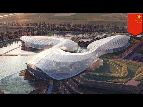 China plans new Yangtze River nature preserve - TomoNews