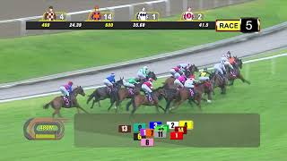 Vidéo de la course PMU PRIX MAIDEN
