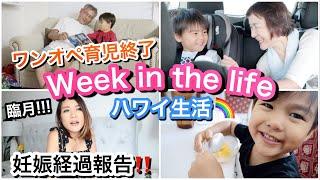 A l o h a ♡ アメリカ人のパパ、日本人のママ(妊娠&ワンオペ育児)、...