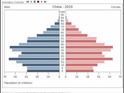 China S Population Pyramid Youtube