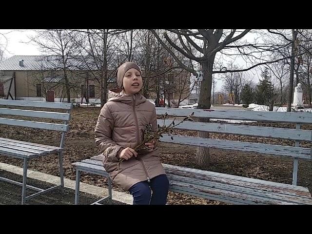 Изображение предпросмотра прочтения – МарияЕдунова читает произведение «Уж верба вся пушистая...» А.А.Фета