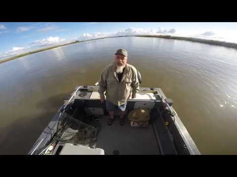 12/8/2019 Sturgeon Fishing The Delta