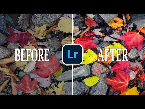 This will FOREVER CHANGE how you DEVELOP COLOR in Your Landscape Photos!