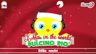 Pulcino Pio Stille nacht.mp3