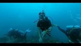 Testing Insta360 One underwater