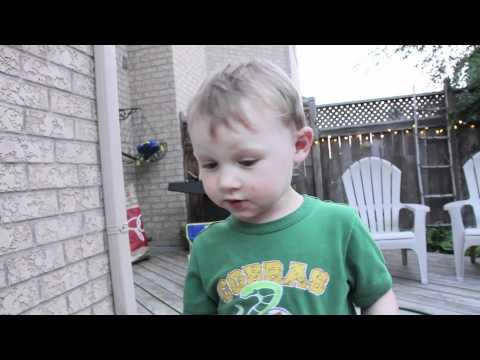 ילד חמוד דואג לזבוב במצוקה