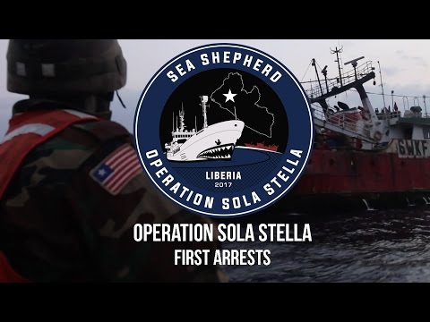 Operation Sola Stella:  First Arrests