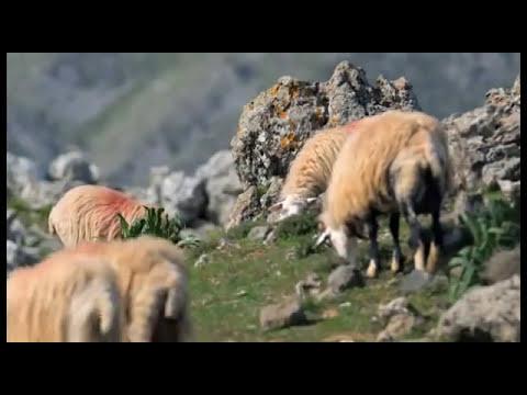 GREECE - The islands - CRETE