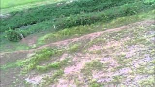 Video Watch Kami Run.....Run Kami run!!!! download MP3, 3GP, MP4, WEBM, AVI, FLV Juli 2017