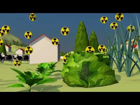Contamination radioactive / Radioactive contamination