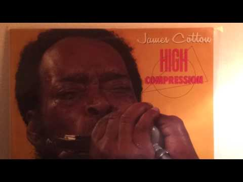 James Cotton . Ain' t Doin' Too Bad mp3