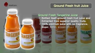 Organic Juice Manufacturer | Organic Fruit Juices | Well Farm