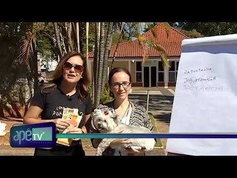 ApêTV - Como vai seu português 15/07/17