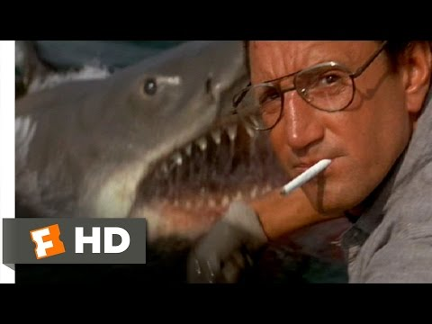 Jaws 1975  You're Gonna Need a Bigger Boat  410  Movies