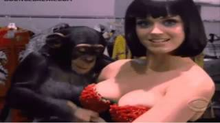 Katy Perry with a lucky monkey