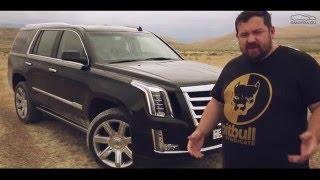 Тест-Драйв Давидыча.  Автомобиль Cadillac Escalade