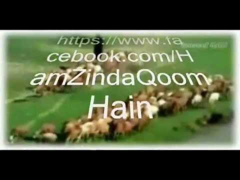 Ham Zinda Qoom Hain