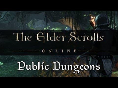 Elder Scrolls Online - Public Dungeons