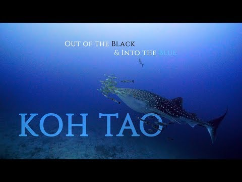 Out of the Black & Into the Blue: Chapter #1. KOH TAO