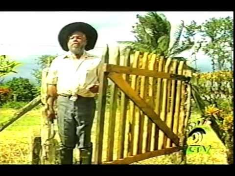 THE ANSWER - Jamaican Movie Staring Charles Hyatt & Fabian Thomas 1990