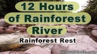 12 hours of rainforest river and sounds. Rain Forest Rest in Full HD.