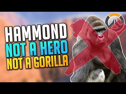 HAMMOND IS NOT A HERO OR A GORILLA! (Overwatch News)