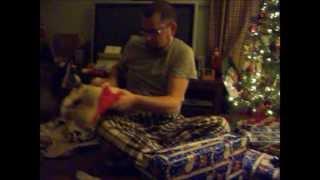 Siberian Husky; Opens Present!