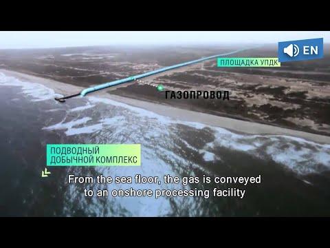 Kirinskoye gas field (subtitles)
