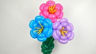 Цветок из воздушных шаров / Flower of balloons(Как сделать цветок из воздушных шаров своими руками. ☞ Мой канал YouTube: http://www.youtube.com/user/sharovedas Компания