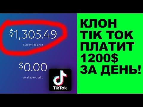 Клон Tik Tok платит 1200$ за день   Обзор Zynn